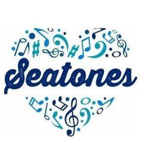 The Seatones